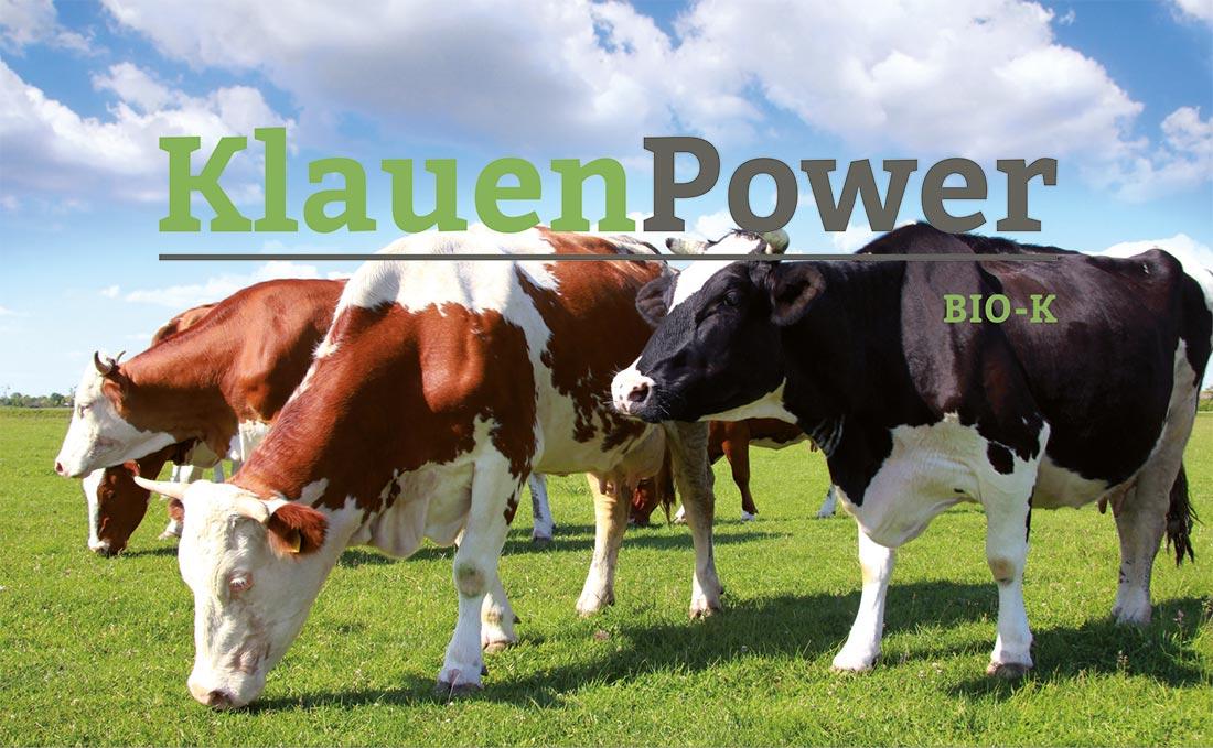 Klauenpower - Klauenpflege für dir Kuh